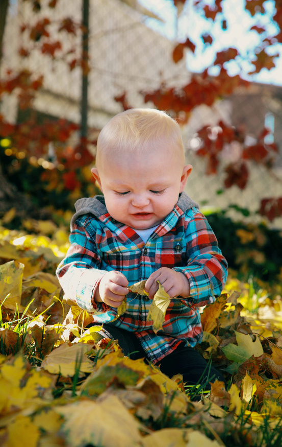 baby is playing with leaves in the garden